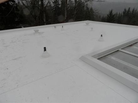 Bellevue Flat Roofing Pro Roofing